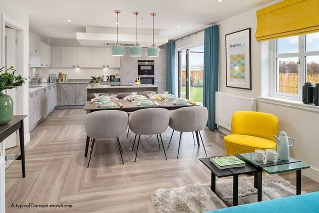 """Thumbnail Detached house for sale in """"Darroch"""" at Evie Wynd, Newton Mearns, Glasgow"""