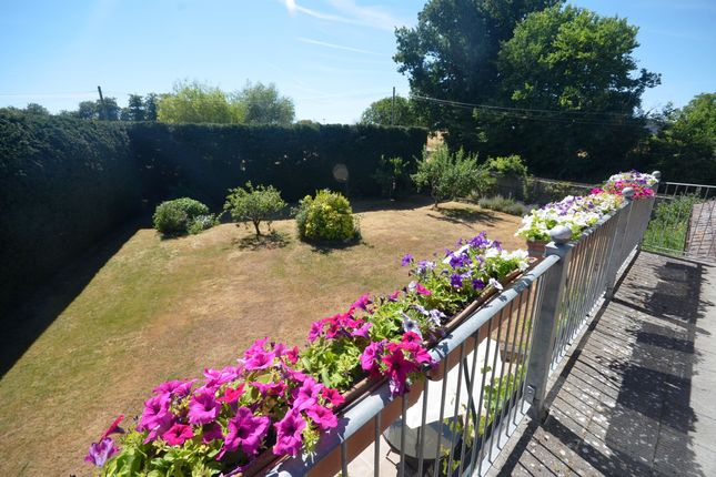 Thumbnail Detached house for sale in The Street, White Notley, Witham