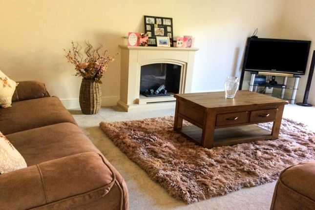 Thumbnail Detached house for sale in Glebe Drive, Exning, Newmarket