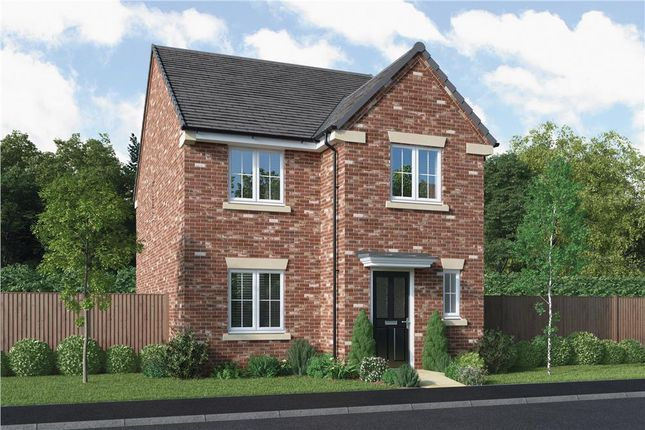 "4 bed detached house for sale in ""The Blackwood"" at Elm Avenue, Pelton, Chester Le Street DH2"