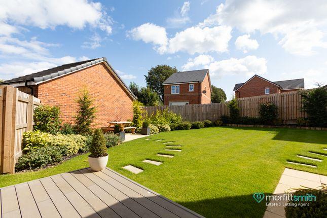 Garden of The Tetbury, Greaves Lane, Stannington S6
