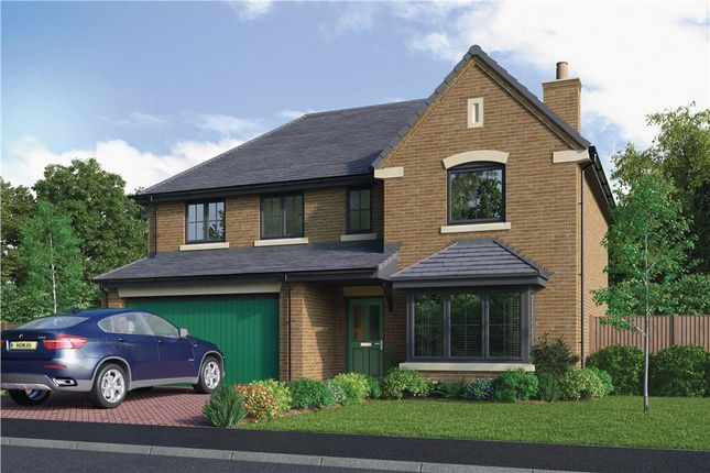 """Thumbnail Detached house for sale in """"The Bayford"""" at Armstrong Street, Callerton, Newcastle Upon Tyne"""
