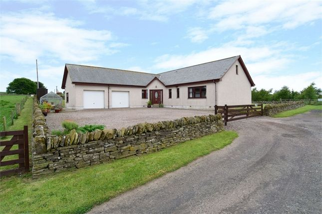 Thumbnail Detached bungalow for sale in Forfar, Forfar, Angus