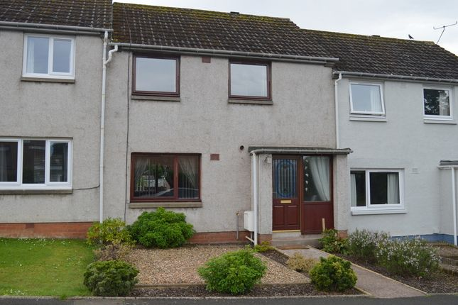 Homes for Sale in Paradise, Coldingham, Eyemouth TD14 - Buy