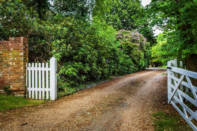 House. Estate Agency Cranleigh Driveway