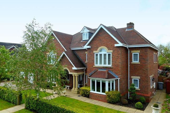 Thumbnail Detached house for sale in Hampstead Drive, Wychwood Park, Weston