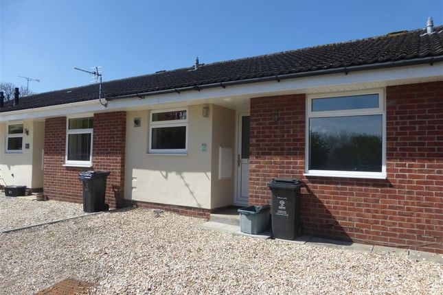 Thumbnail Bungalow to rent in Bellver, Toothill, Swindon
