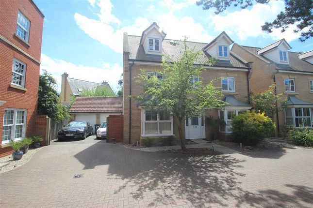 Thumbnail Detached house for sale in Septimus Drive, Myland, Colchester