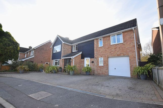 Thumbnail Detached house for sale in Meadway, Halstead, Essex
