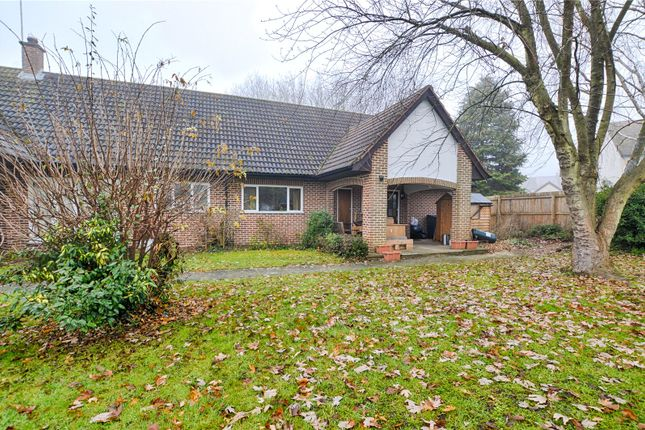 Property to rent in Malting Lane, Much Hadham SG10