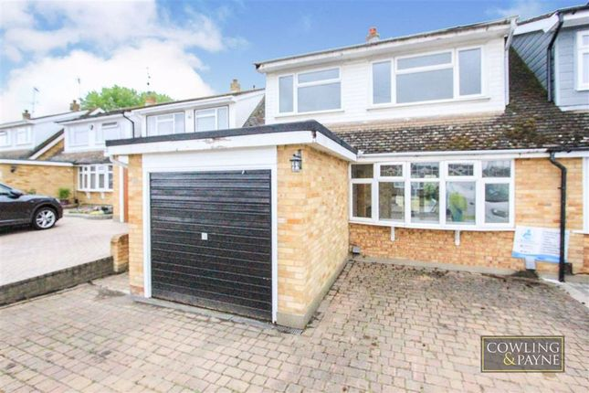 3 bed semi-detached bungalow to rent in Ulting Way, Wickford, Essex SS11