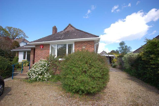 Thumbnail Detached bungalow to rent in Belmore Lane, Lymington