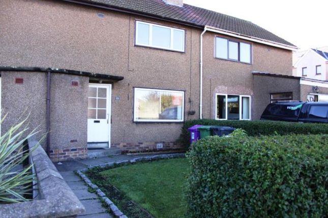 Thumbnail Terraced house to rent in Glenisla Road, Montrose