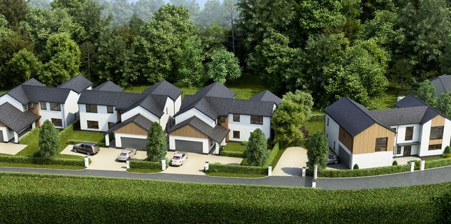 Thumbnail Detached house for sale in Looseleigh Lane, Crownhill, Plymouth