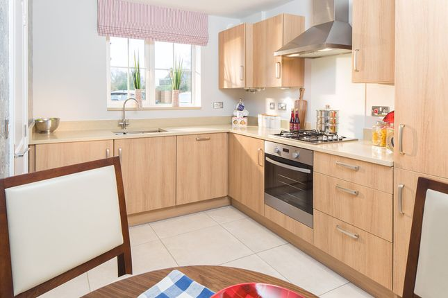 """Thumbnail Semi-detached house for sale in """"Compton"""" at Great Mead, Yeovil"""