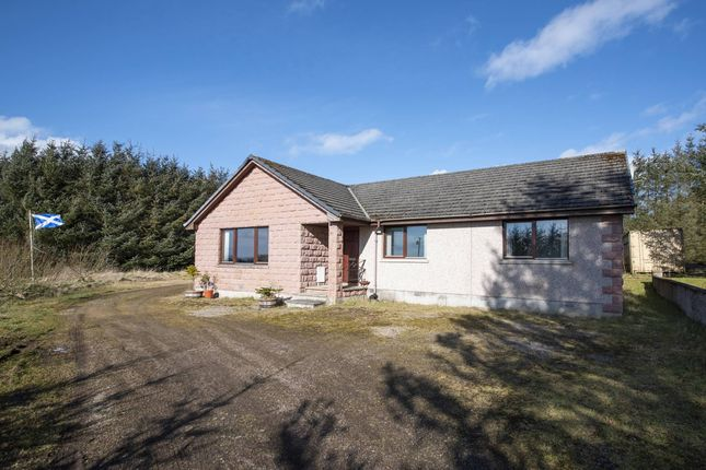 Thumbnail Bungalow for sale in New Byth, Turriff, Aberdeenshire