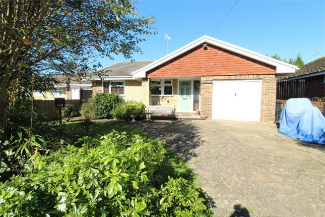 Thumbnail Detached bungalow for sale in Maple Walk, Bexhill On Sea, East Sussex