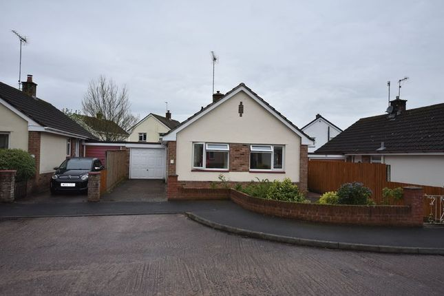 Thumbnail Detached bungalow to rent in St. Lawrence Crescent, Exeter