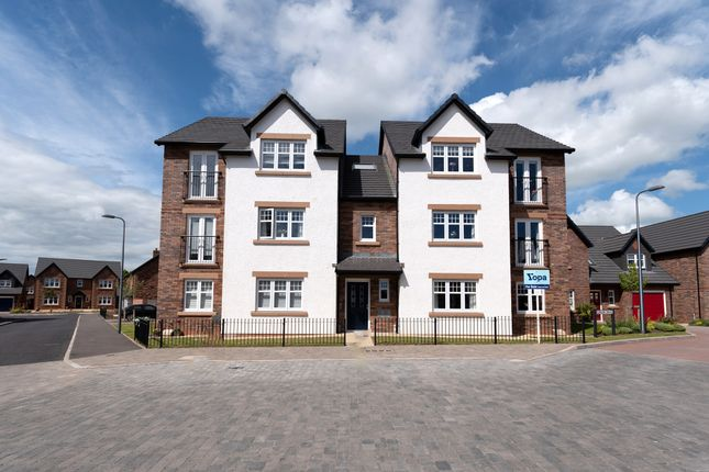 Thumbnail Flat for sale in Osprey Way, Dumfries