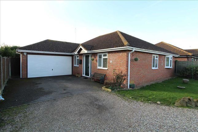Thumbnail Bungalow for sale in Ash Grove, Great Bromley, Colchester
