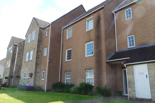 Thumbnail Property to rent in Marine Gardens, Coleford