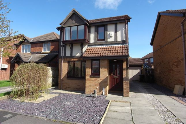 Thumbnail Detached house to rent in Roeburn Drive, Morecambe