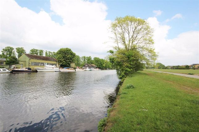 Thames Meadow, West Molesey KT8