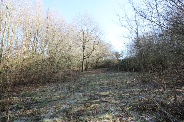 Thumbnail Land for sale in Rushlake Green, East Sussex