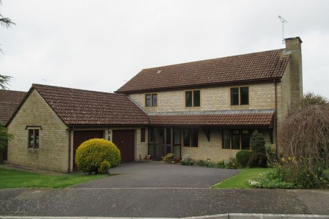 Thumbnail Detached house to rent in Cedar Fields, West Coker, Yeovil