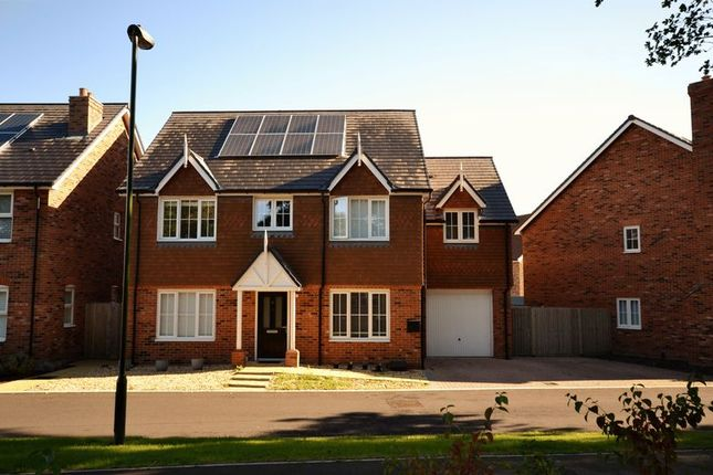 Thumbnail Detached house for sale in Hawthorn Way, Billingshurst