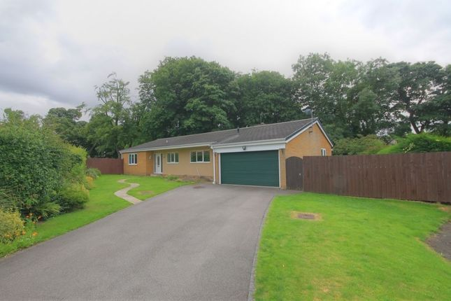 Thumbnail Bungalow for sale in The Shops, Surrey Street, Hetton-Le-Hole, Houghton Le Spring