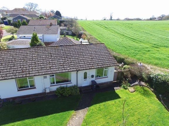 Thumbnail Semi-detached bungalow for sale in Metcombe Rise, Metcombe, Ottery St. Mary