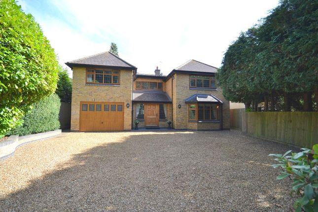 Thumbnail Property to rent in Ecton Lane, Sywell, Northampton