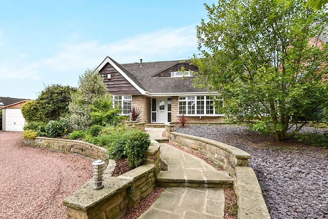 Thumbnail Detached house for sale in Storth Lane, Broadmeadows, South Normanton, Alfreton