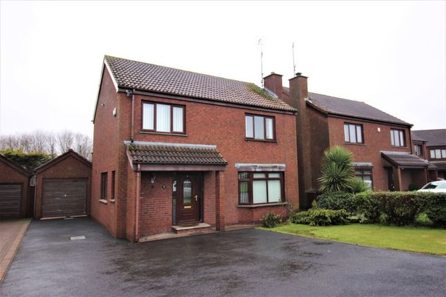 Thumbnail Detached house for sale in Sprucefield Court, Lisburn