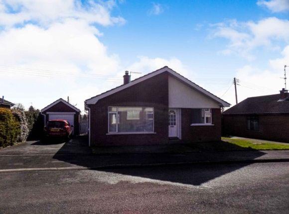 Thumbnail Detached bungalow to rent in Derryvolgie Park, Lambeg, Lisburn