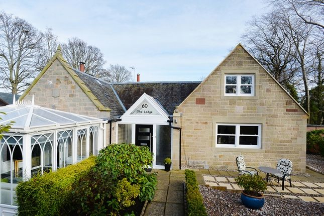 Thumbnail Detached house for sale in 60 Fords Road, Stenhouse, Edinburgh