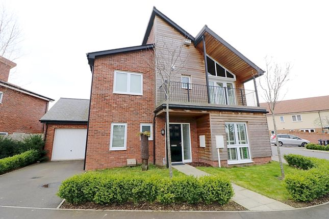 Thumbnail Detached house for sale in Buttercup Drive, Polegate