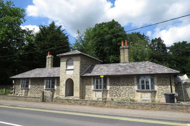 Thumbnail Cottage for sale in The Street, Great Barton, Bury St. Edmunds