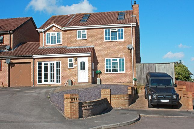 Thumbnail Detached house to rent in Basil Close, Swindon