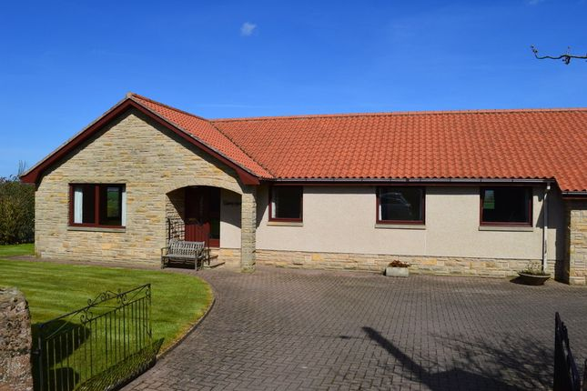 Thumbnail Detached bungalow for sale in Thornton, Foulden, Berwick-Upon-Tweed