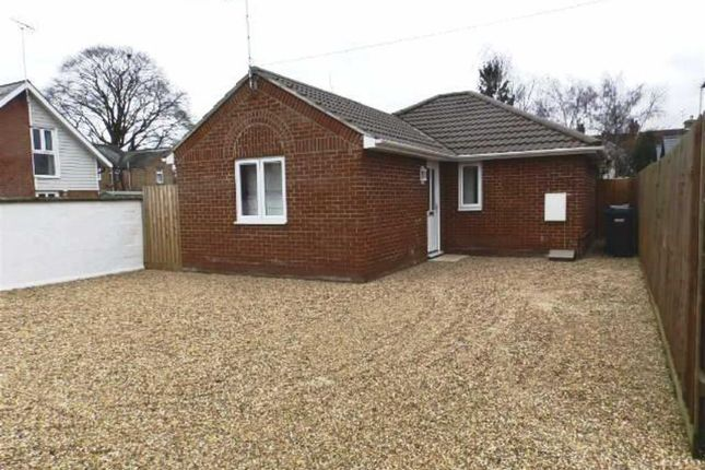 Thumbnail Detached bungalow to rent in Cauldwell Hall Road, Ipswich, Suffolk