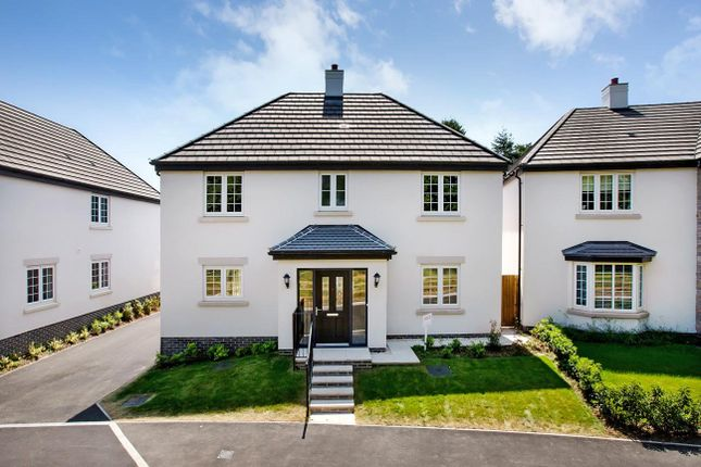 Thumbnail Detached house for sale in Main Road, Cannington, Bridgwater