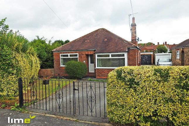 Thumbnail Detached bungalow to rent in Beech Lawn, Anlaby, Hull
