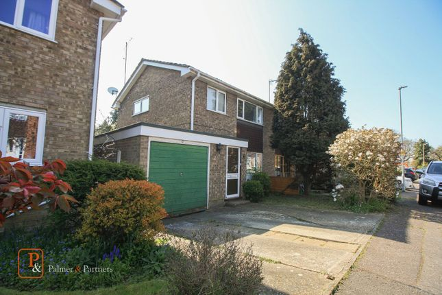 Thumbnail Semi-detached house to rent in St Davids Close, Colchester, Essex
