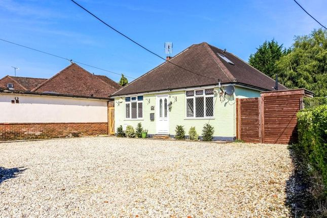 Thumbnail Bungalow to rent in Halebourne Lane, West End, Woking, Surrey