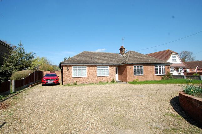 Thumbnail Detached bungalow for sale in Maldon Road, Tiptree, Colchester