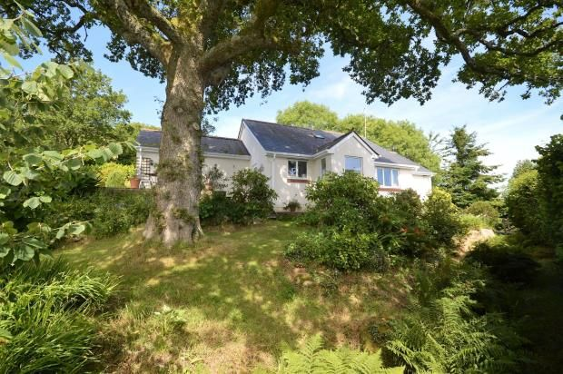 Thumbnail Detached bungalow for sale in Manaton, Newton Abbot, Devon