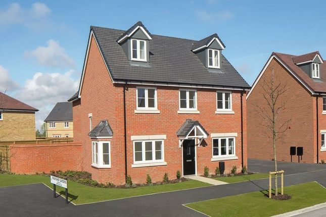 """Thumbnail Detached house for sale in """"The Chichester Oatfield"""" at Shopwhyke Road, Chichester"""