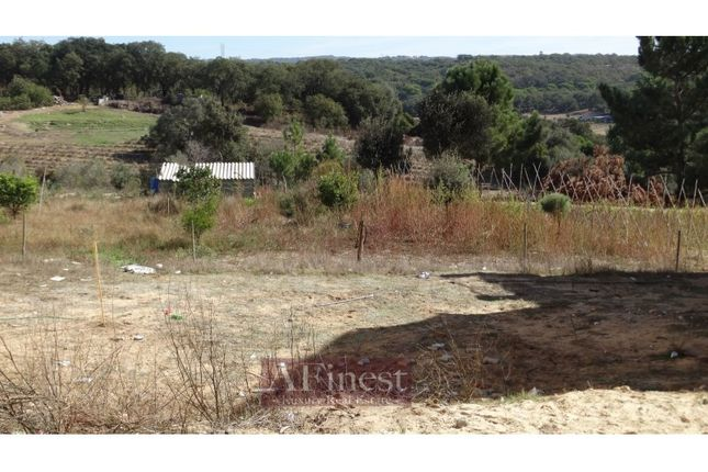 Thumbnail Land for sale in Melides, Melides, Grândola